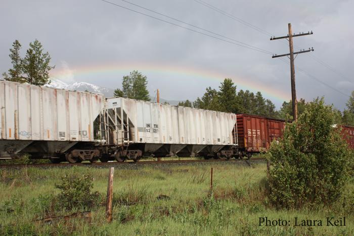 train, cn, tracks