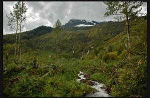borealis geopower geothermal power canoe reach valemount