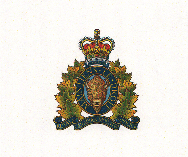 Police seek witnesses to criminal collision