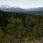 Swift Creek Trail