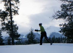 Cross-country skiing ski Jackman Flats Valemount