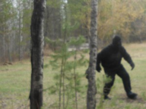 Bigfoot sighting Valemount