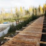 Ancient Forest, Dome Creek, universal boardwalk, Caledonia Ramblers hiking club