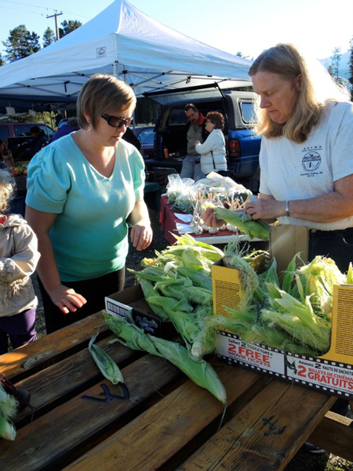 Robson Valley Farmer's Markets close out season