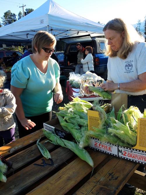 robson valley, mcbride farmers market, valemount farmers market, dunster farmers market, buy local