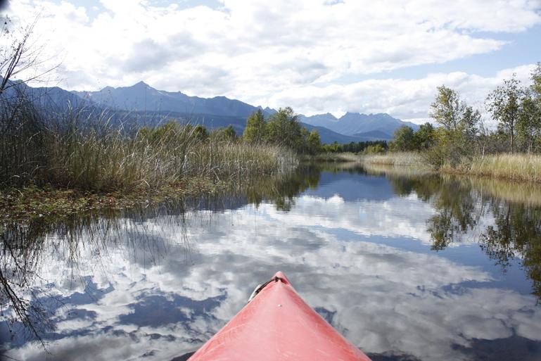 Kayaking Cranberry Marsh