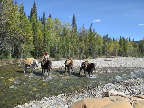south fork horse camp, snake indian river, sean elliott, north boundary trail, moose river, travis anderson, willmore provincial park, astoria, jasper, jasper national park, willmore wilderness park,