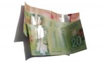 money, canadian money, bills