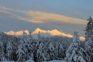 premier, premier range, premier mountain, mountain, snow, snow peak, tree, sunrise