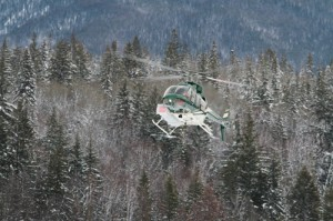 avalanche, snow, trees, mountain, helicopter, rescue
