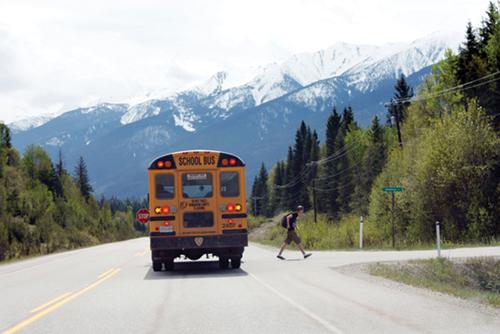 school bus, bus, bus stop, school