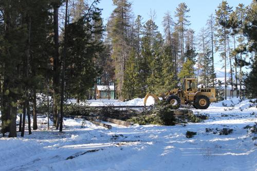 logging, tractor, ash street