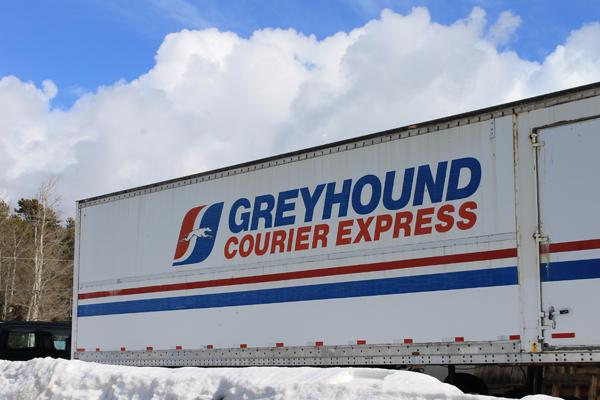greyhound, courier, bus, transportation, passenger, service, transportation