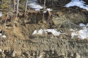 swift creek restoration bank banks restoration