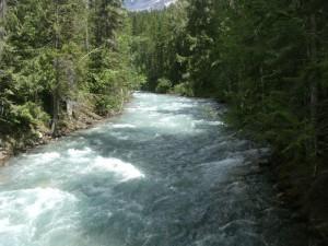 Jen Scheller Robson River (2)