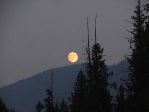 Mick Callas smoky moon Thursday night