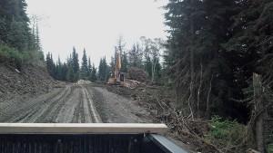 Valemount's 5-Mile road 2014 logging and road upgrades are underway