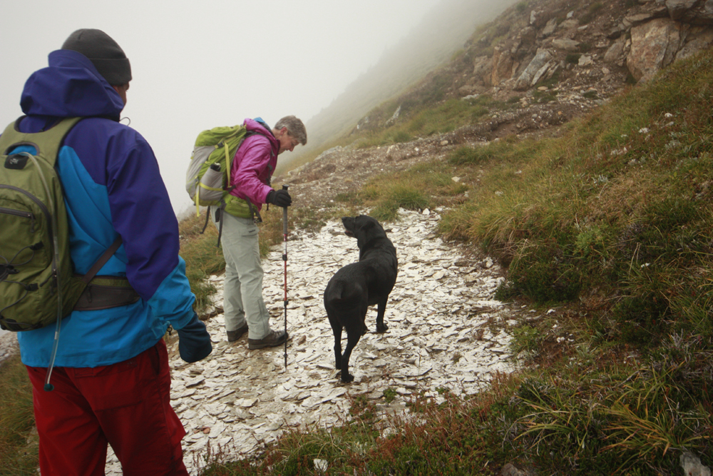 Mica Mine Trail: discover an old mica mine and mule trail