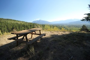 Picnic table swift creek lookout (2)