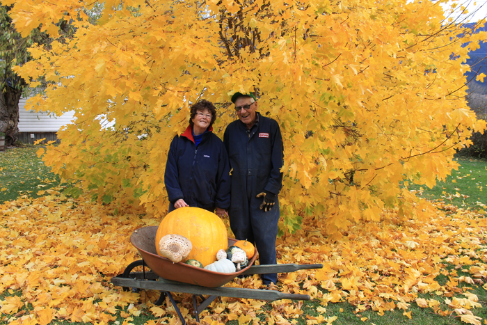 Residents find huge pumpkin and mushrooms
