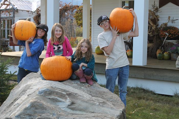 McBride Keim's Pumpkins (2)