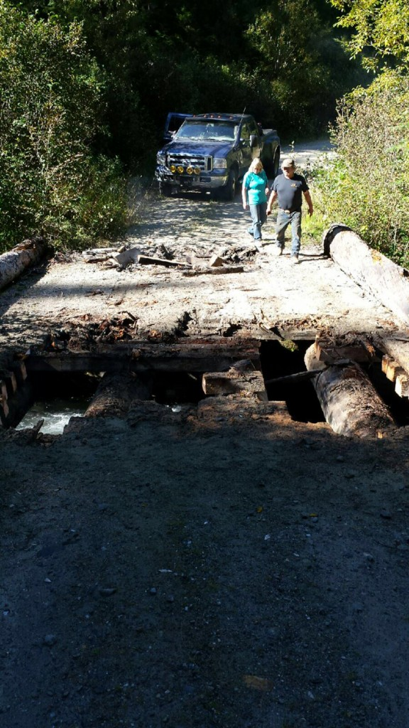 Damage to a bridge at Windfall Creek, down the West Canoe Forest Service Road along Kinbasket Reservoir. The intentional damage, by chainsaw and fire, left the road impassable after a shoot out with the RCMP's Emergency Response Team in September.