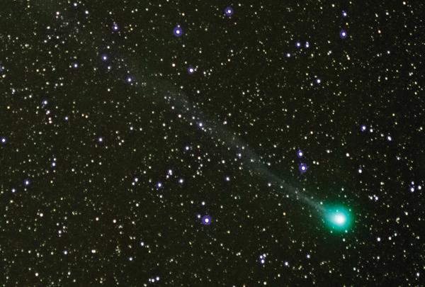 Comet Lovejoy McBride Matthew Wheeler (4)