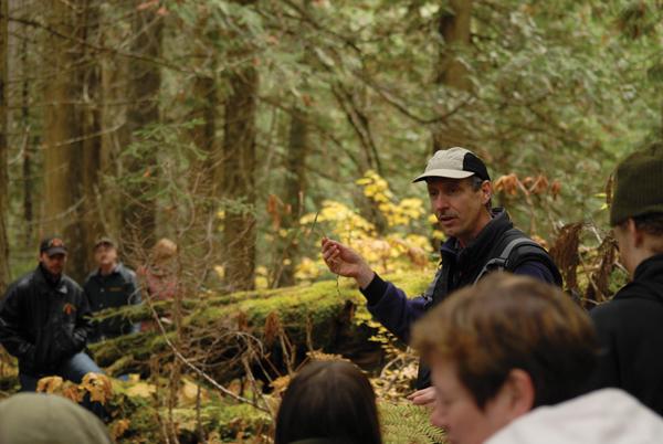 Darwyn Coxson at ancient forestaa