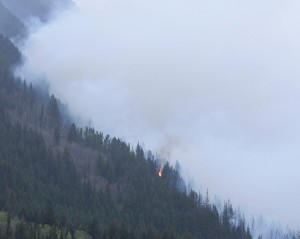 Mt. Robson Fire May 2015 (8)