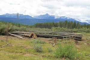 202 ash sandy acres