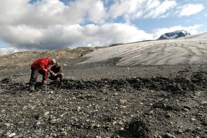 unbc glaciers mcbride bc (3)