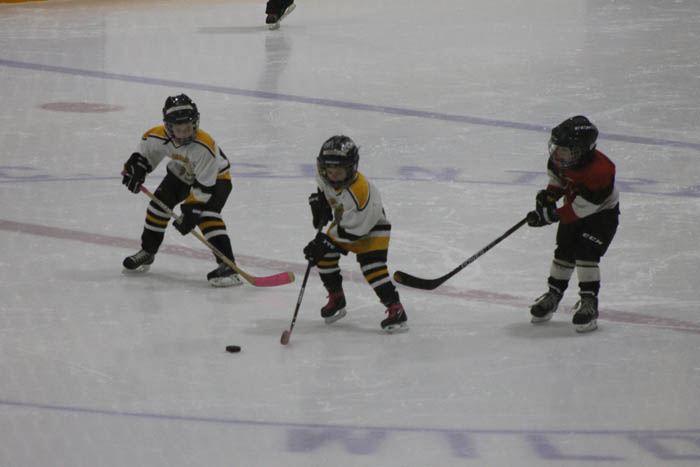 Tykes and novice tourney