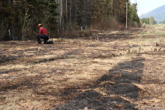 McBride grass fire clean-up