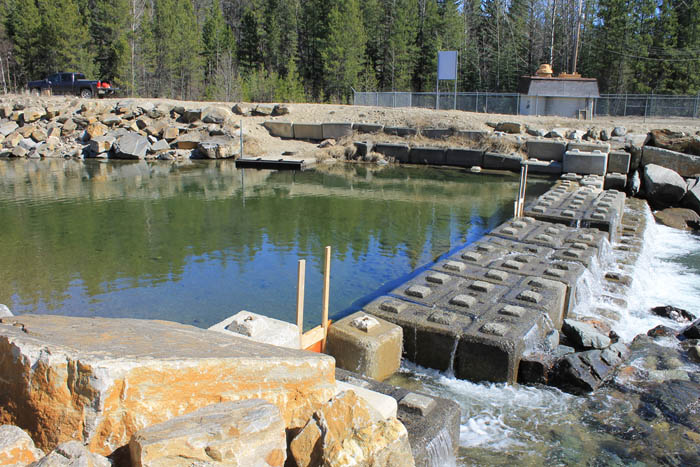 More work to secure Swift Creek spawning grounds