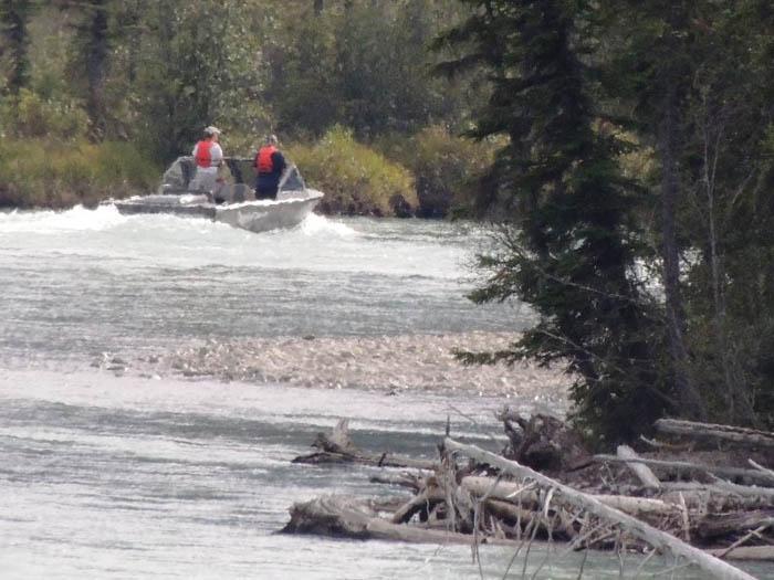 Boaters wreak havoc on salmon spawning