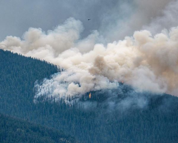 """Province declares state of emergency due to wildfires; prepares for """"mass evacuation scenario"""""""