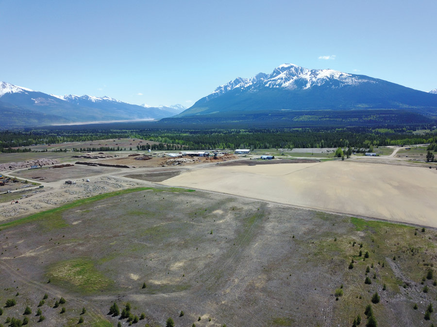 Valemount Community Forest: debt free, able to invest