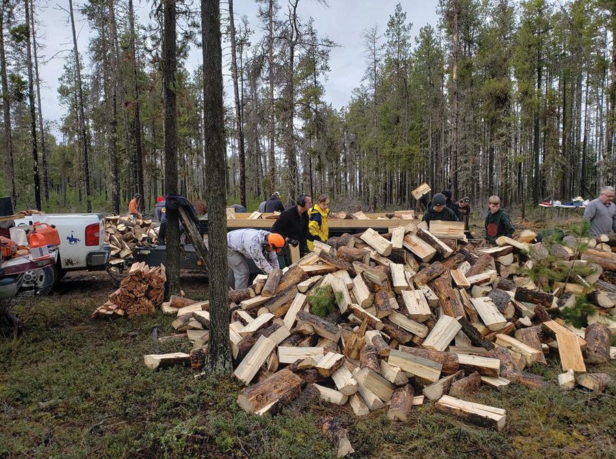 Firewood for seniors