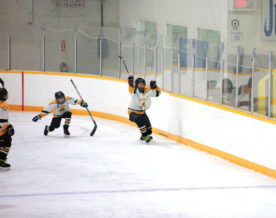 Valemount minor hockey gets the go-ahead