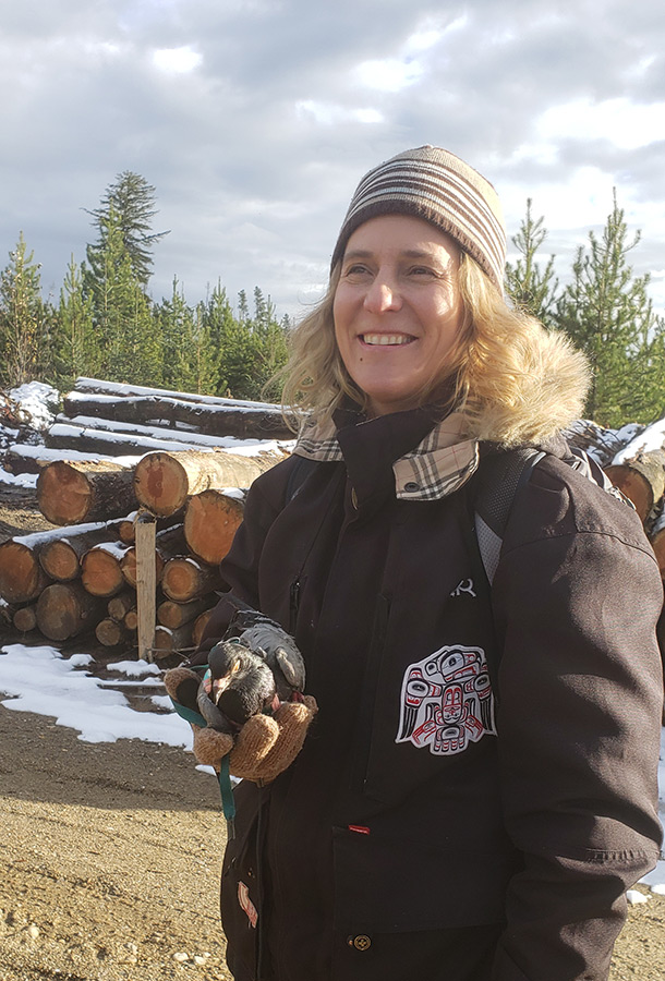 Birds of a feather: pigeon embarks on cross-Canada tour