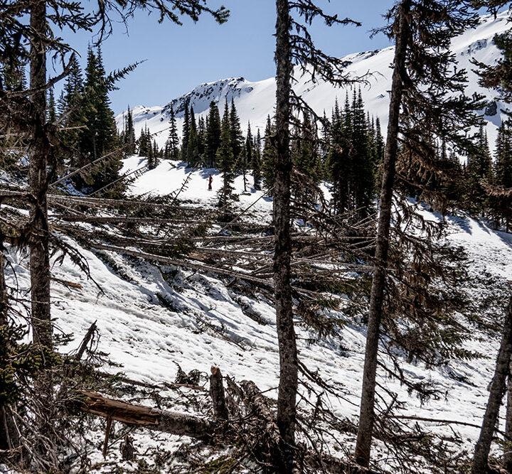 Avalanche tech Martina Halik talks avalanche myths