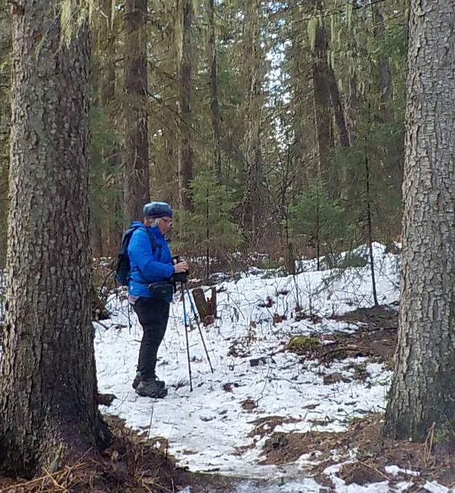 Forestry watchdog misses faulty math, but praised for calls to modernize biodiversity laws