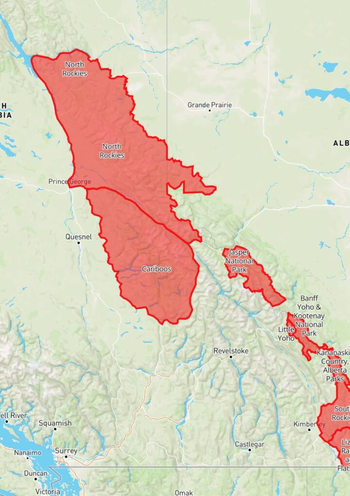 Avalanche Canada issues avalanche warning for parts of BC and Alberta
