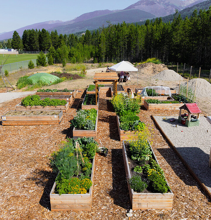 RVCS growing food security with community garden