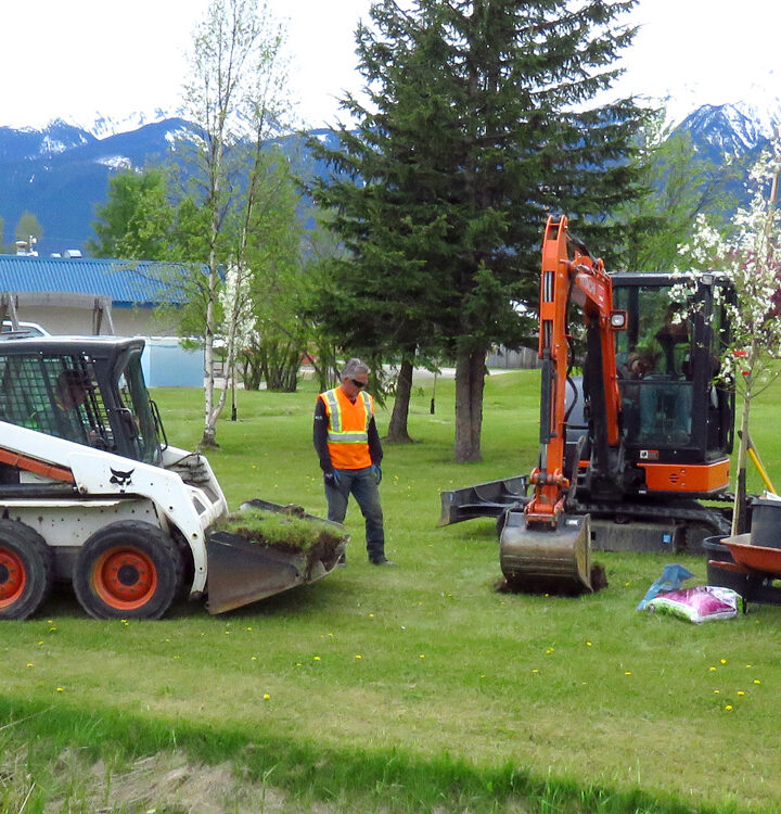 New crab apple trees thanks to BC Hydro grant