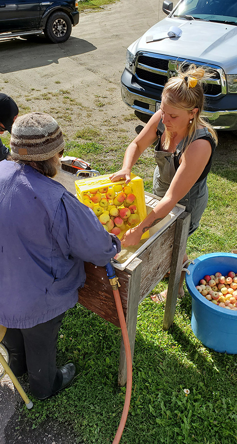 Local apple press available for public use