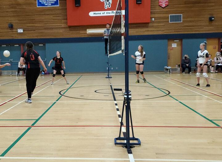 Mustangs Vs. Timberwolves: high school hosts first volleyball match since 2019